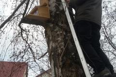 Eichhörnchenfutterkasten im Schulhof 2018